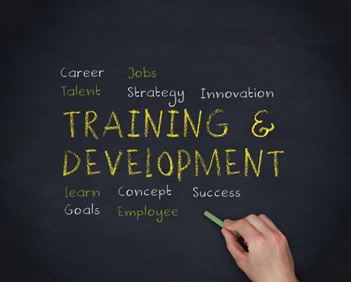 Training Staff to Understand Analytics